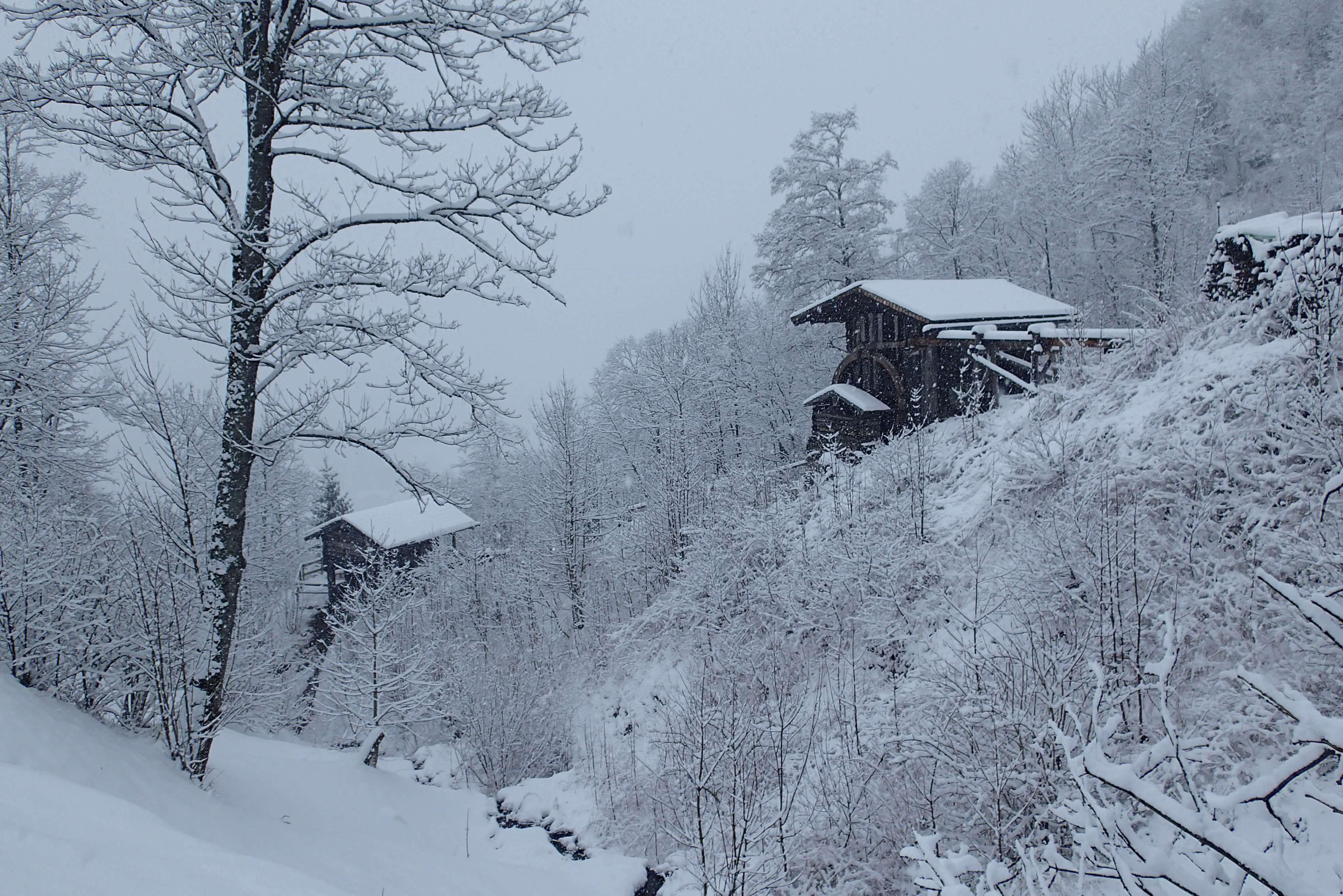 Mühlen im Winter